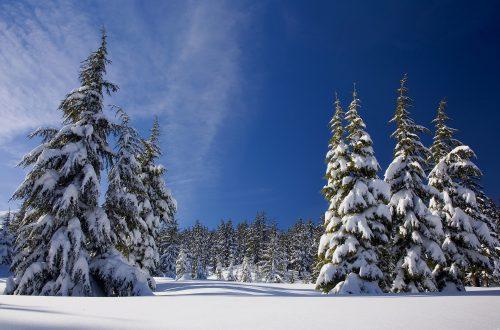 snow-1902052_1920